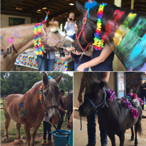 FB horse bday party