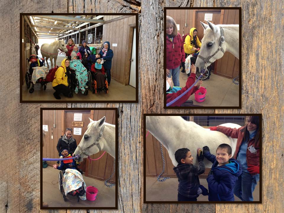 photos of Waller ISD students enjoying field trip at SIRE